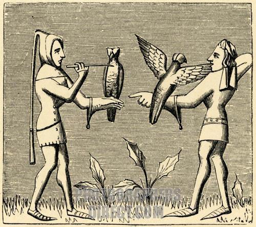 Medieval falconry